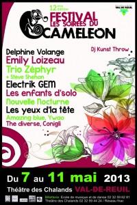 Festival du Caméléon 2013
