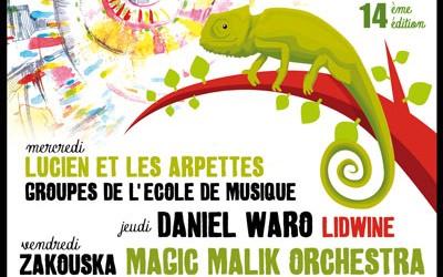 du 13 au 16 mai : Les soirées du Caméléon, un festival de musiques actuelles