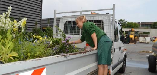 Les travaux reprennent dans les jardins, la collecte des déchets verts aussi !