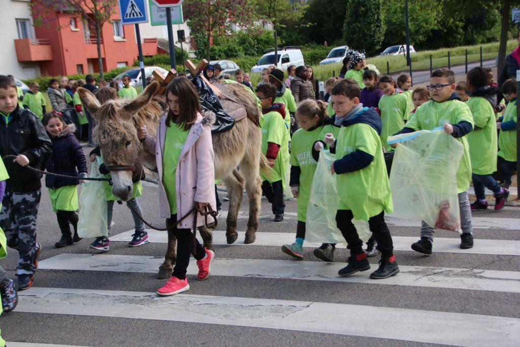 Les ânes sont également utilisées lors de l'opération Ville Propre tous les ans au mois de Mai