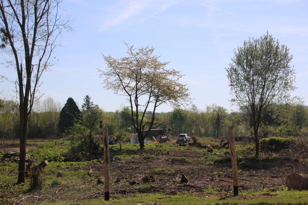 Les 10 hectares de terrain ont été défrichés