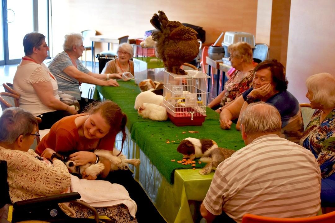 Les animaux s'invitent à l'Espages!