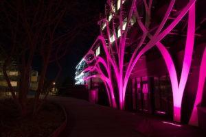 plusieurs équipements publics illuminés en rose du 6 au 9 mars