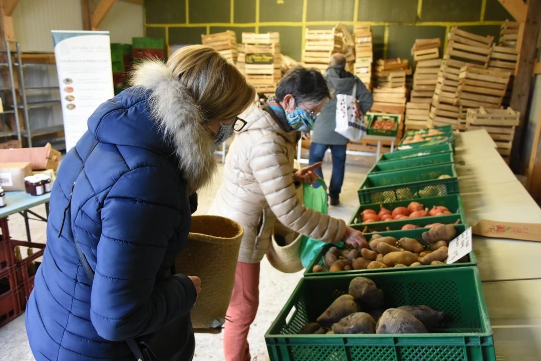 Le paradis des amateurs de légumes frais et bio !