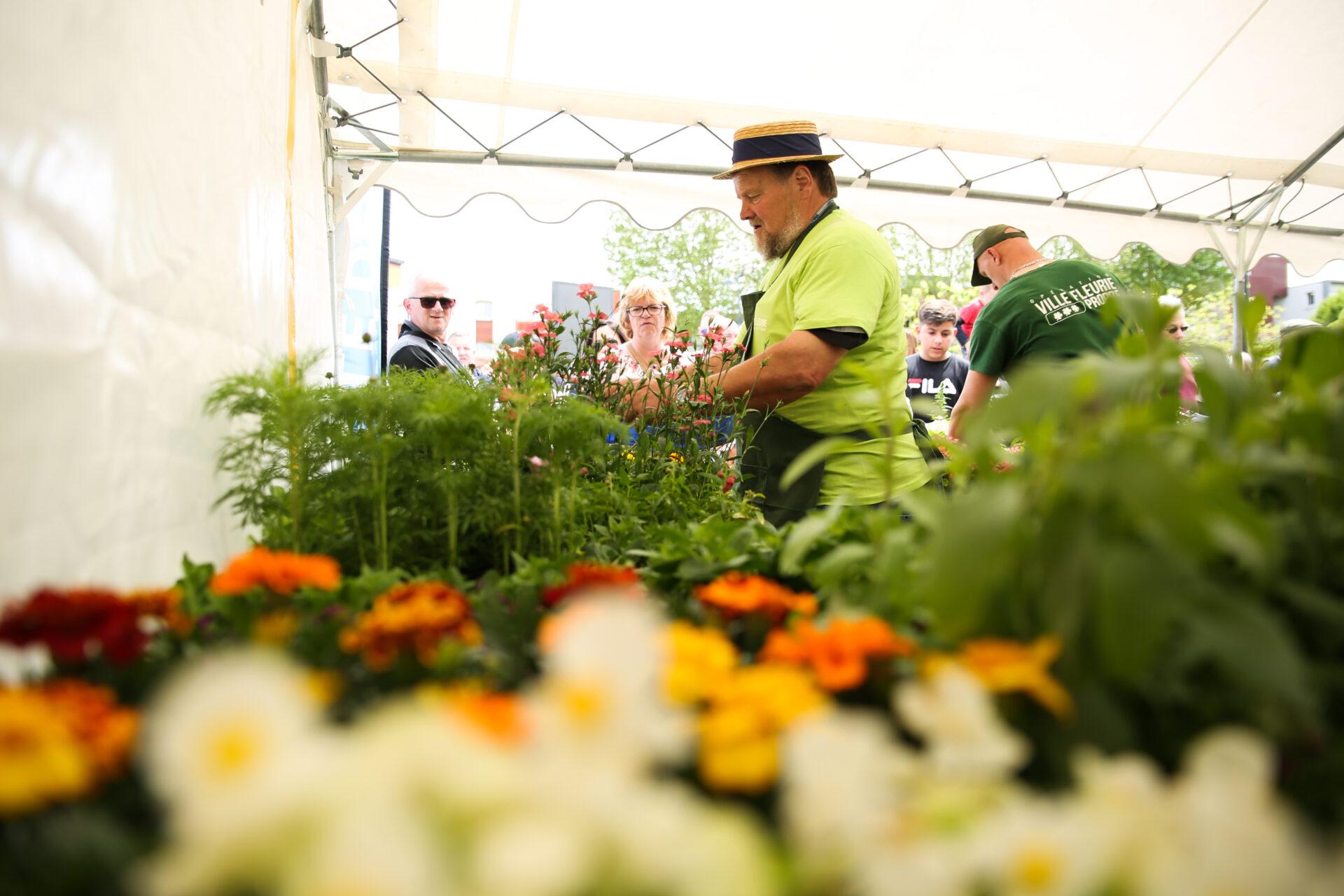 Opération Ville Fleurie les 4 et 5 juin : entre distribution de fleurs et animations