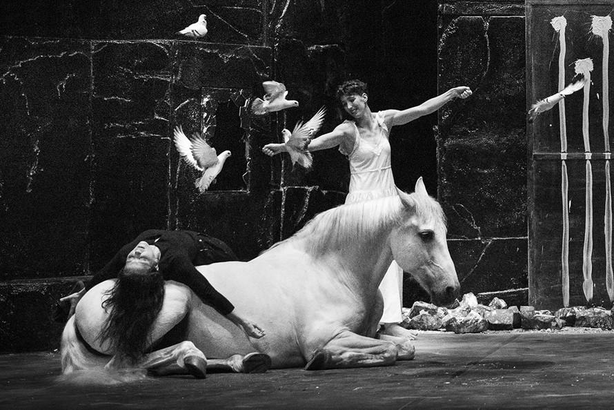"""Théâtre de l'Arsenal : """"Falaise"""", Compagnie Baro d'evel"""