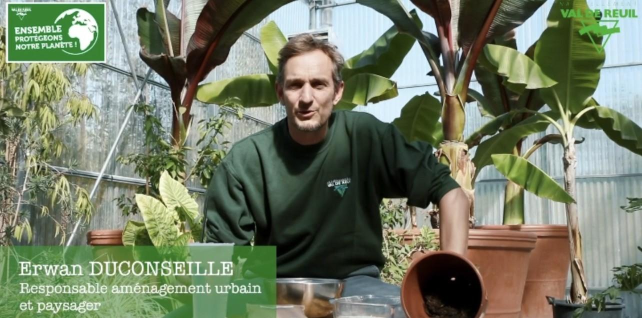 Mois du développement durable : Tutoriel pour fabriquer des bombes à graines (vidéo)