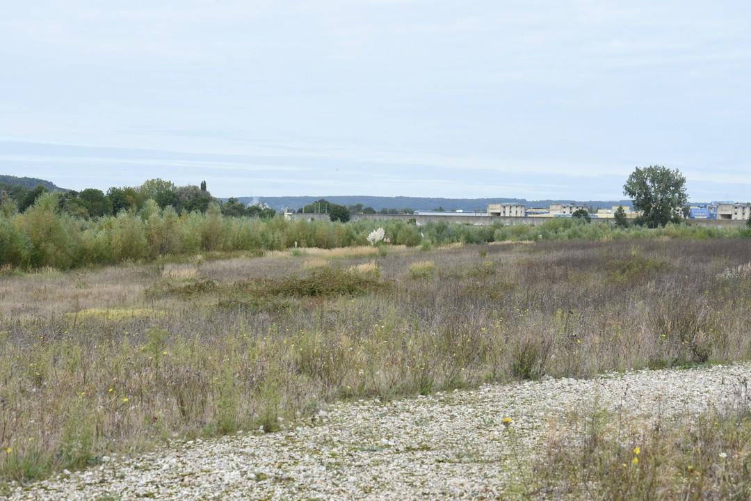 Visite du parc écologique des Errants (ex-carrière CEMEX)